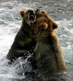 Медвежья пасть.