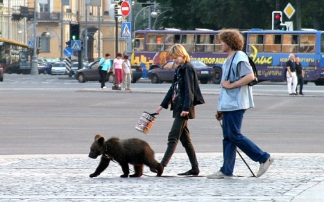 Кто-нибудь сомневался, что по русским улицам гуляют медведи? Картинку рекомендуется показывать иностранцам.