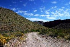 Перьевые облака над дорогой к Сосновому каньону.