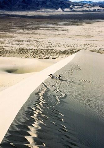 На песчаном гребне. Дюна Eureka.