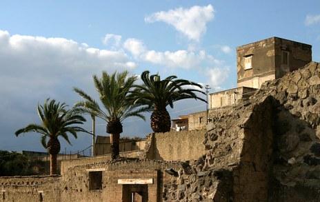 Три пальмы и зажиточный дом Casa d'Argo, Геркуланум.