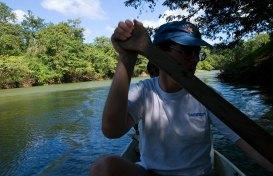 Сплав на каноэ по Belize river, в районе деревни Bermudian Landing.