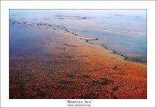 """""""Марсианское море"""". Красные водоросли в водоеме Grand Prismatic Spring."""