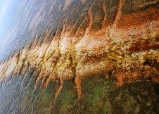 Разноцветные водоросли в Бисквитном бассейне.