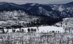 Луг Tuolumne, занесенный снегом.