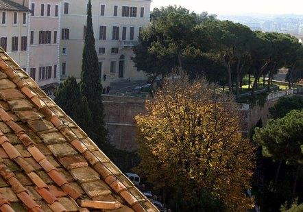 Кипарисы во внутреннем дворике.