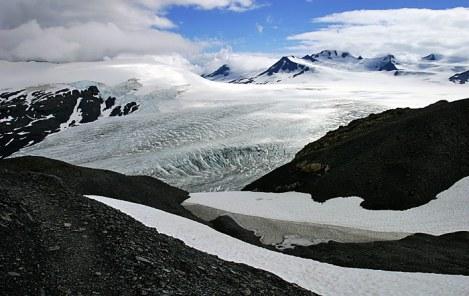 Начало ледника Exit Glacier.