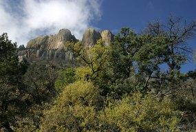 Весенние краски в горах Chisos Mountains.