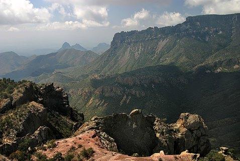 Pine Canyon высоко в горах Chisos Mountains.