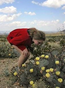Катя, изучающая бутоны грушевидного кактуса.