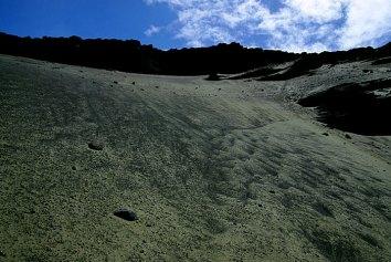 Зеленый обрыв, плавно переходящий в одноименный пляж.