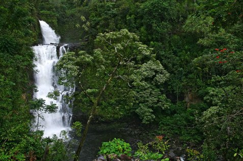 Мощный водопад на обочине дороги Ulaino road.