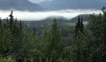 Поле тумана над дорогой.