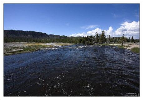 В Огненной реке отлично себя чувствует и размножается коричневая и радужная форель.