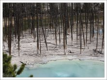 """Молочно-зеленая вода водоема """"Цистерна"""", с высоким содержанием гейзерита."""
