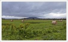 Время убирать сено. Северное побережье Балатона.