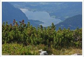 Озеро Гальштаттзее имеет вытянутую форму.