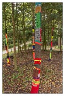Заботливо укутанные шарфами молодые деревья.