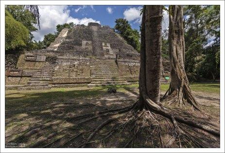 Самая высокая в Ламанаи пирамида - High Temple (33 метра).