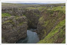 Лососевая река Víðidalsá.