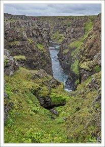 Яркая растительность в каньоне Kolugljúfur.