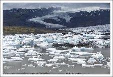 В лагуне Фьядльсаурлоун очень много айсбергов, которые откалываются от края ледника.