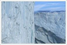 Морские птицы кажутся крошечными на фоне ледяной стены.
