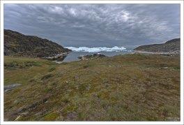 Айсберги уходят в свободное плавание.
