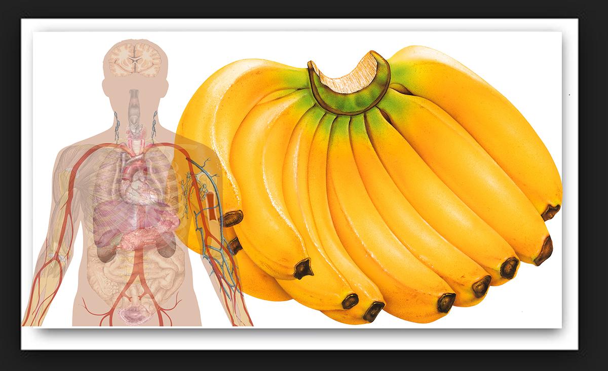 Daca esti un iubitor de banane iata 10 lucruri socante (NR.6 ESTE FOARTE IMPORTANT)