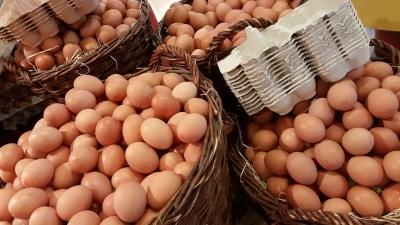 Cestos de ovos, que simbolizam a diversificação dos investimentos