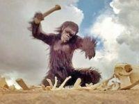 """Humano primitivo golpeando com osso (cena do filme """"2001 - Uma Odisseia no Espaço"""")"""