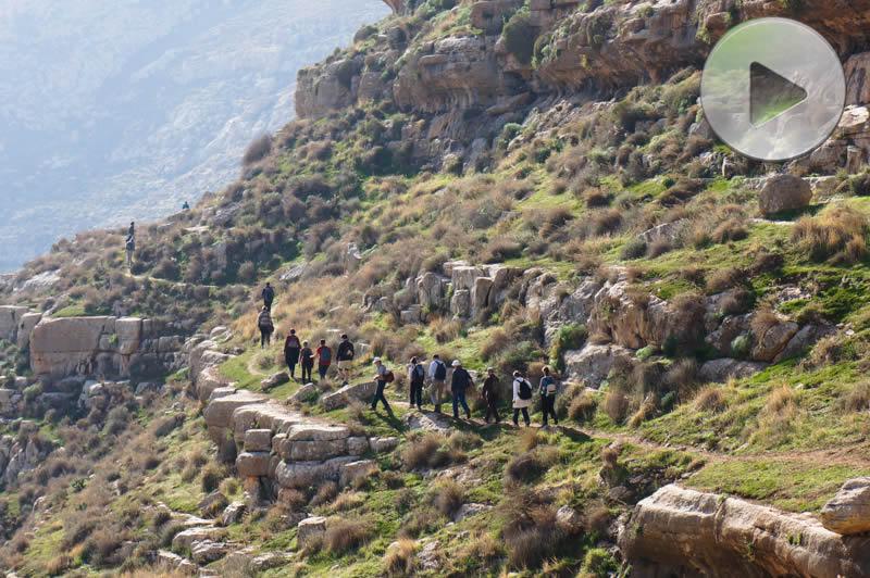 Wadi Karitone Tekoa Galleria