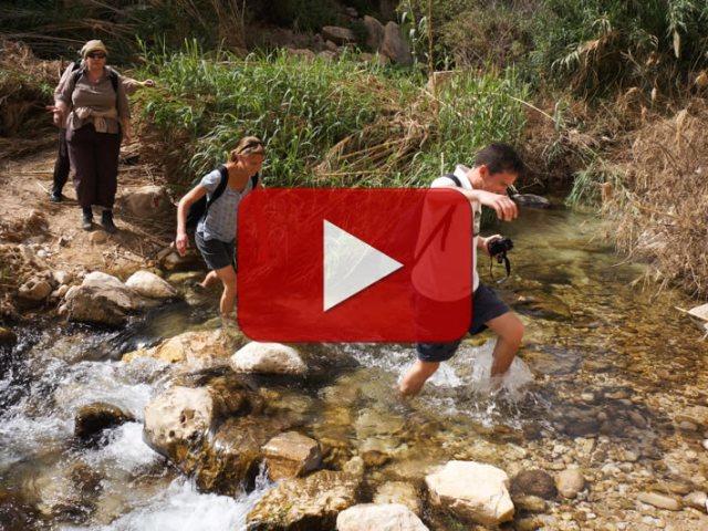Il video della camminata avventurosa
