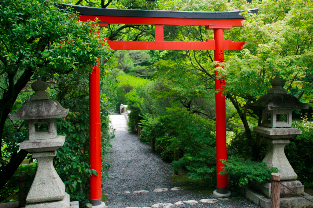Torii gate on the gatware to the pond