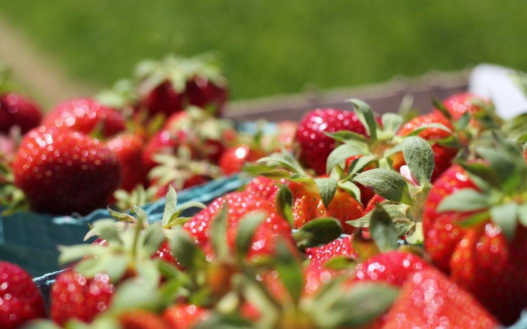Pourquoi les fruits à confiture subissent-ils une forte revalorisation et des pénuries en 2020 ?
