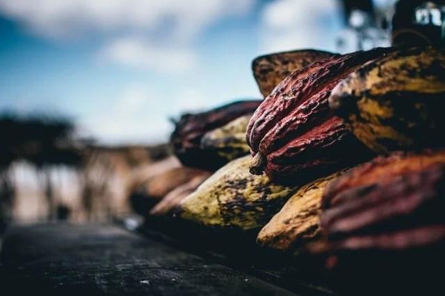 Faire fabriquer sa pâte à tartiner bio : top 10 des raisons pour lesquelles vous ne trouverez pas meilleur fabricant qu'Andrésy Confitures !