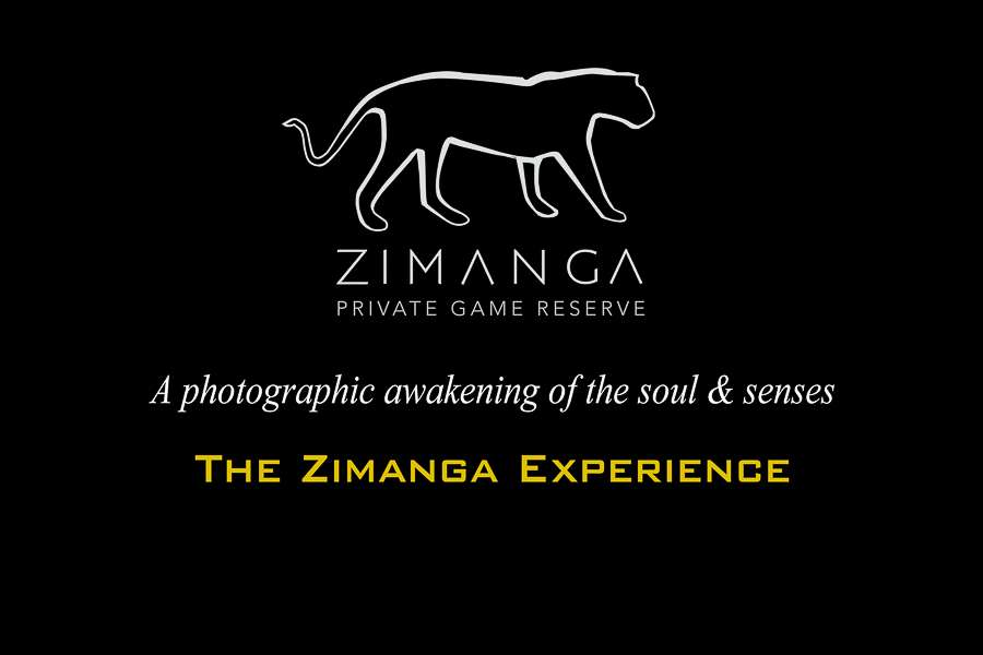 Zimanga Photography