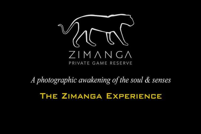 Zimanga Photography experience with Andrew Aveley