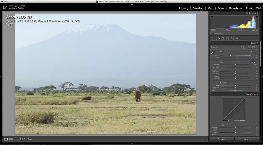 Lightroom Dehaze Tool example by andrew aveley in Amboseli of Mount Kilimanjaro and a Elephant