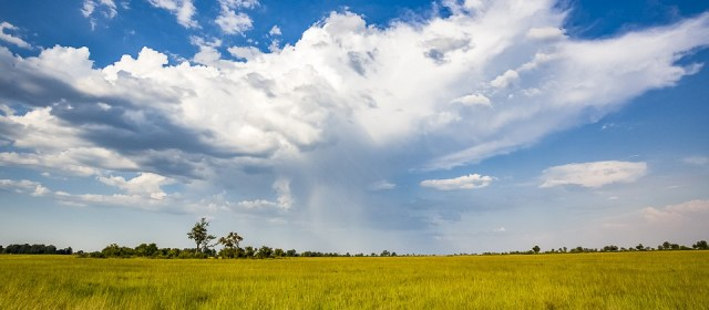 A landscape image of the spectacular rain clouds over the wildlife photographer mecca of the Okavango delta in Botswana