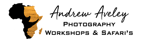 Workshop Packages