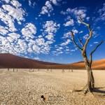 Namibia Landscape Photography Tour