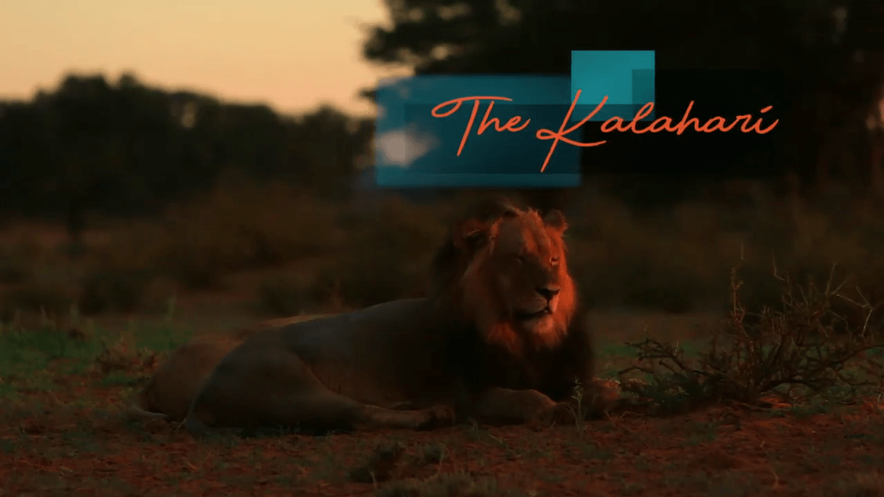The Kgalagadi Short Film