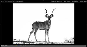 Lightroom & Photoshop Image Edit