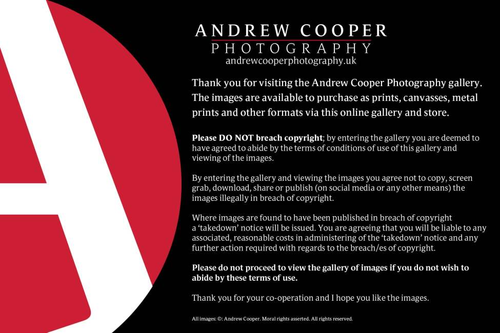 andrew-cooper-photography-gallery-intro-1920px-2019-3