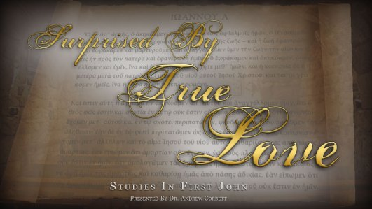 Surprised By True Love - Studies In First John for Small Groups