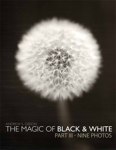 The Magic of Black & White: Part III - Nine Photos eBook cover