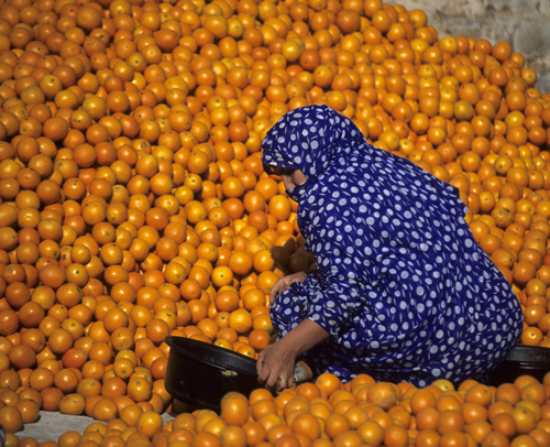 Travel photo of Woman and oranges, Guelemine, Morocco by Chris Coe