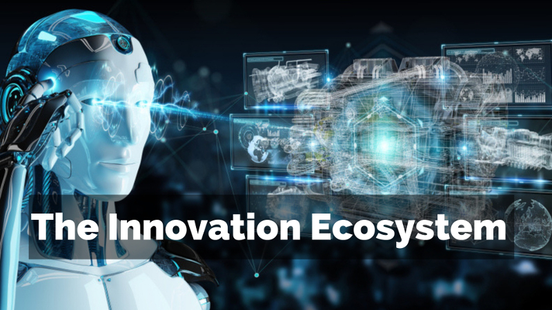 The innovation ecosystem