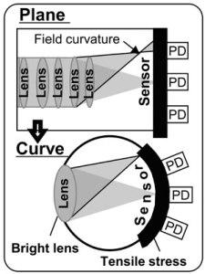 curvediagramhalfcolumn